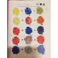 Year 2 - Colour mixing with paint, focusing on brush control