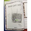 Reception - Keeping a diary of a bean