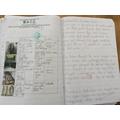 Year 6 - Tudor crime and punishment