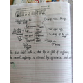 Year 5 - The Buddhist eight-fold path and four noble truths