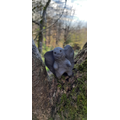 Clay tree guardian.