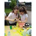 Science Fair Fun