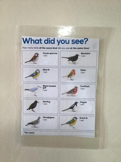 What birds can you see in your garden? Please let us know! Miss Hardy & Miss Finch.