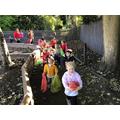 Exploring pumpkins and the Pumpkin Parade!