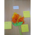 Labelling flowers