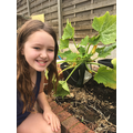 Leila gardening