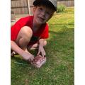 Alfie finding dino fossils
