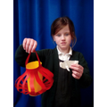 Chinese Lantern and Origami Ox