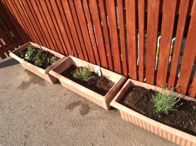 Check out our new planters