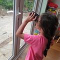 Una has been bird watchng
