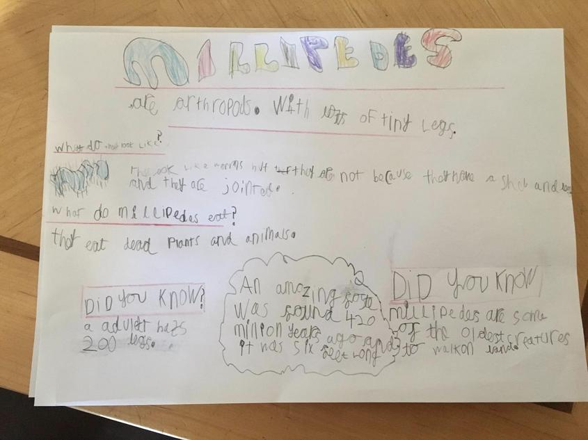 Cassiel's magnificent millipede writing