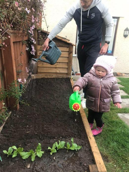 Ivy's Daddy built a vegetable patch!