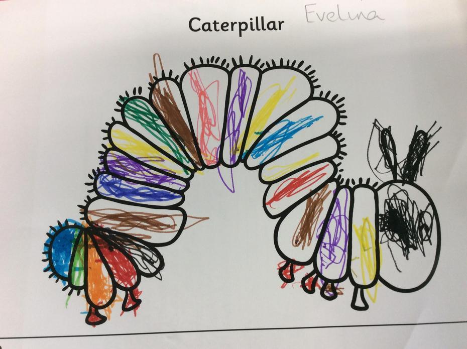 A colourful caterpillar.