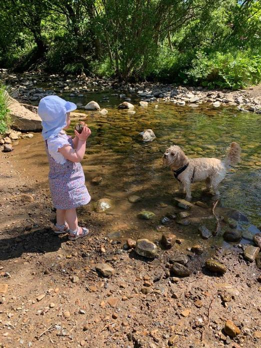 Finding big stones to throw into the river