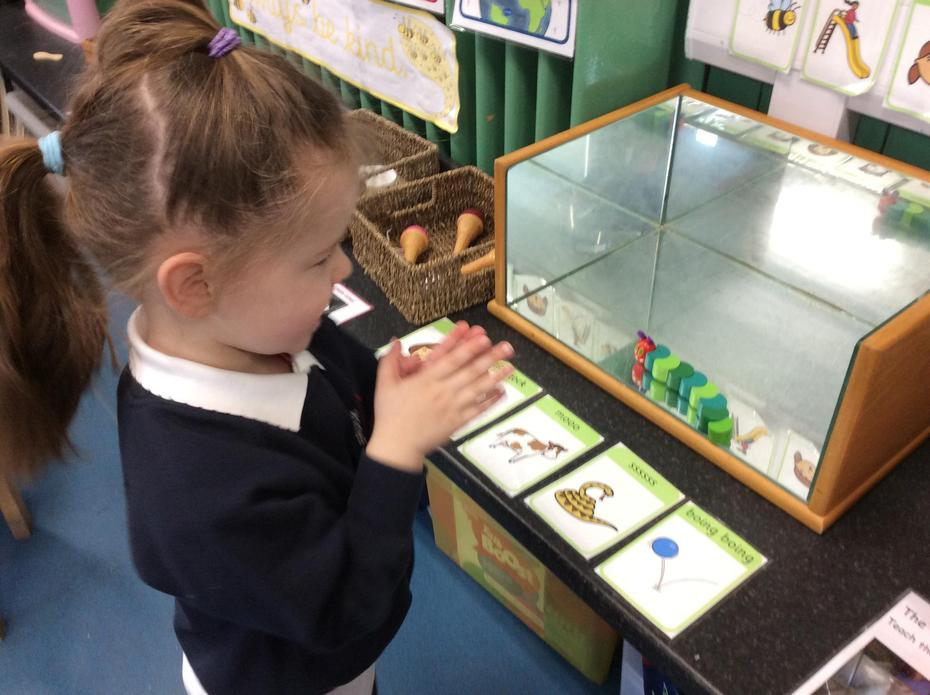 Teaching the The Very Hungry Caterpillar Phonic voice sounds.