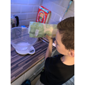 Another home baker in Y5