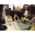 D & T in Y6 testing their water structures
