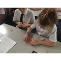 Exploring teeth in Y4
