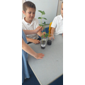 Observing and measuring in Science in Y2