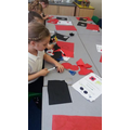 Poppies in Y2