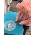 YR collecting ice and writing their names