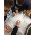 Beginning animals and habitats topic Y4
