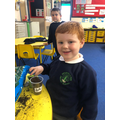 Planting bean seeds in Y1