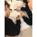 Identifying features of a diary