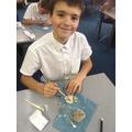 Excavating fossils in Y6