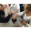 Science in Y3