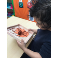 We used conkers dipped in paint to decorate our Autumn leaves.