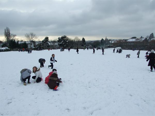 Brookland in the snow