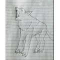 Alfie's drawing of an Arctic Wolf