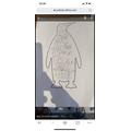 Wow Sienna. You have written amazing describing words to describe a penguin! Superstar :)