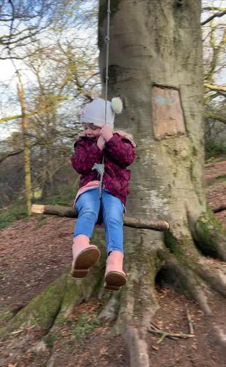 Willow enjoying a rope swing on a Forest walk!
