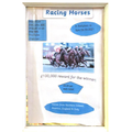 Peter's poster for the Barnaby Derby