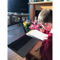 Alfie's working hard at home!