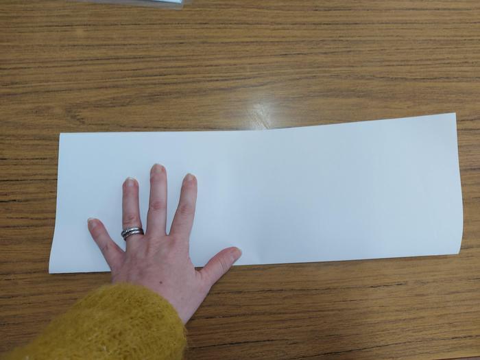 2. Fold in half.