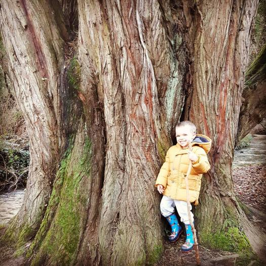 Matthew: Exploring forests & collecting sticks & stones.