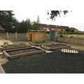 Our raised beds which keep us busy with gardening