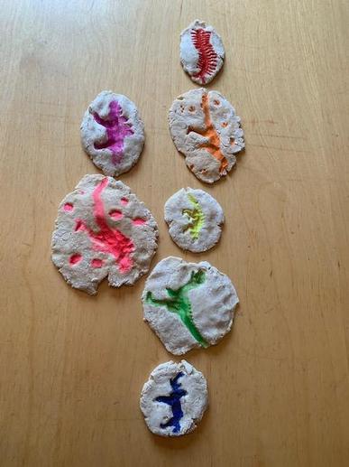 Rowan's salt dough fossils