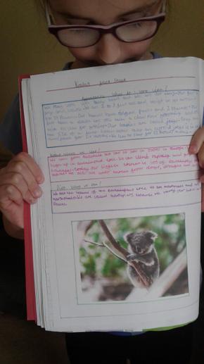 Lauren's information writing.