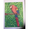 Roisin's Parrot
