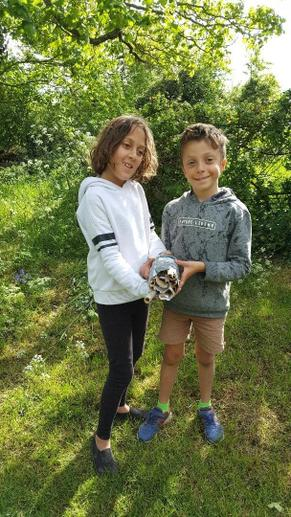 Bug Hotel made by Vivi and Daniel