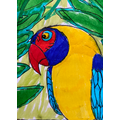 Matt's Parrot