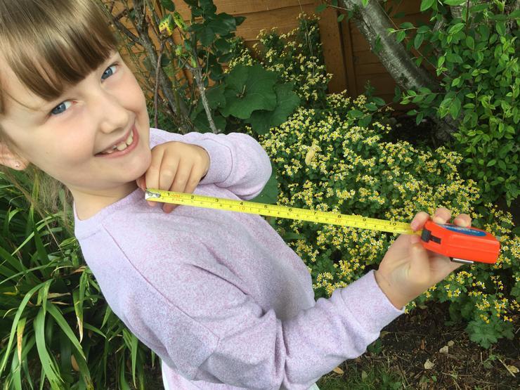 Measuring her giant leaf