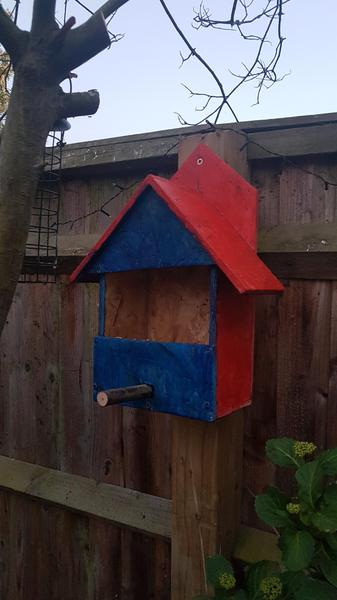Abigail's bird house