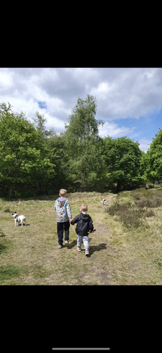 Freddie and his cousin off on a bear hunt