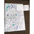 Maja's Non-chronological report about polar bears