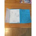 Enya's leaflet